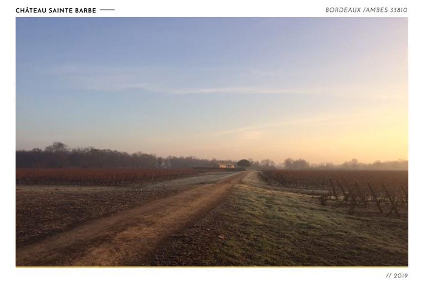 chemin à l'aube